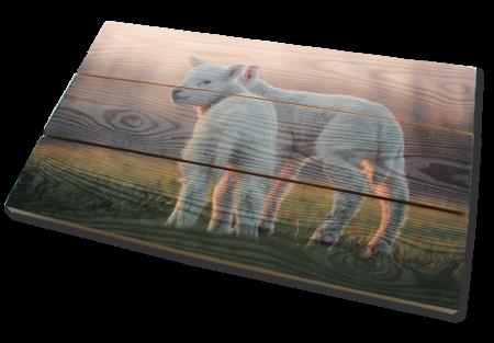 Foto auf Holz im Freien aufhängen