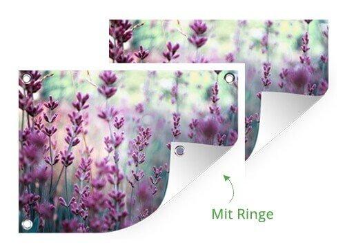Foto auf gartenposter mit Ringe